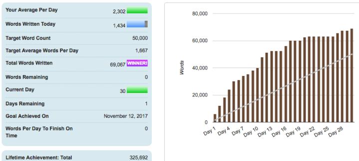 I Lost My First NaNoWriMo After Four Years